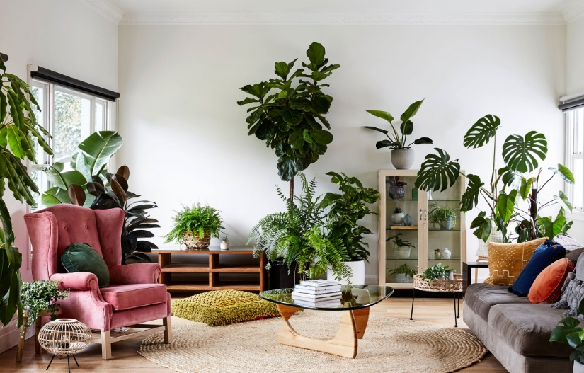 Natural interior design lounge