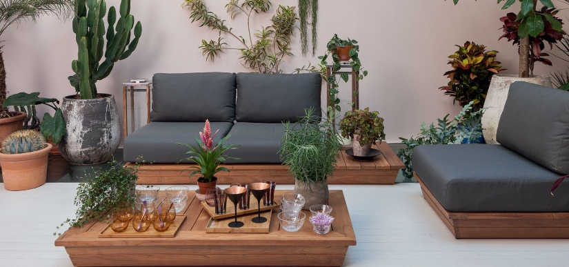 Plants lounge area